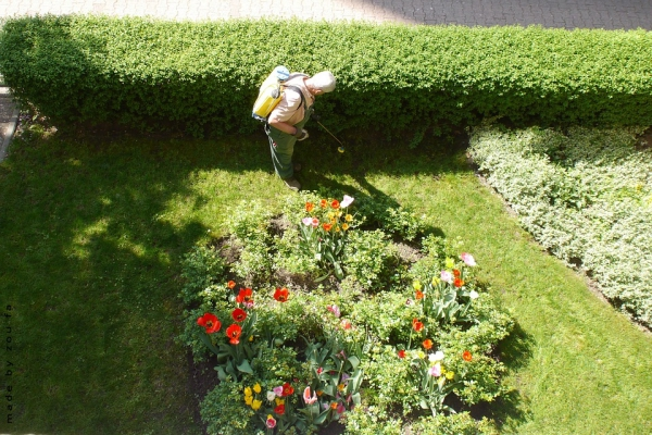 tipos_pulverizadores_jardin