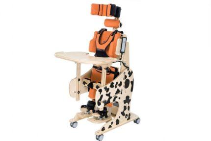 silla-rehabilitacion-dalmatian3
