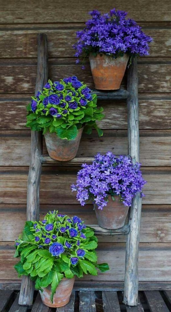 diseno-de-jardines-con-flores-5
