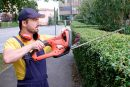 habilidades-jardineria-entrada